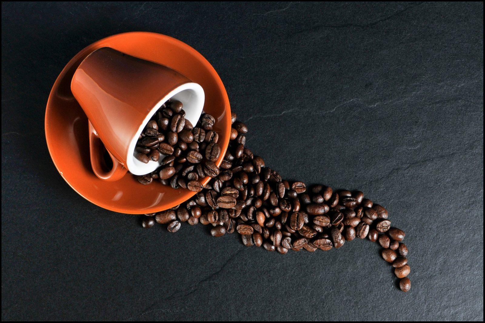 Le Café bien-être de Casabalma